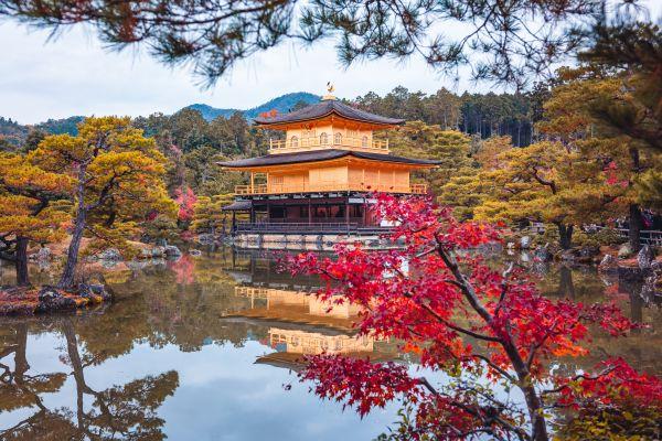 Kinkakuji Tempel im Herbst