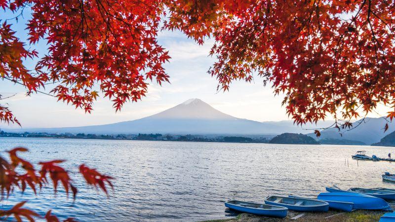 Mount Fuji, Lake Kawaguchi, Herbst, Laubfärbung