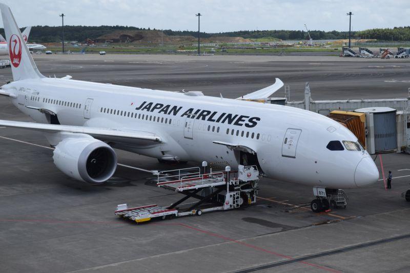 Boeing 787, Japan Airlines, Günstig nach Japan fliegen